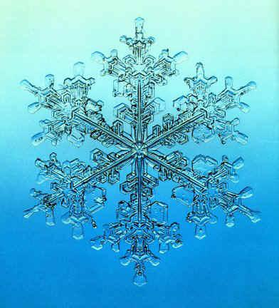 The Stable Arrangement Of Hydrogen Bonded Water Molecules In Ice Gives Rise To Beautiful Hexagonal Symmetry That Reveals Itself Every Snowflake