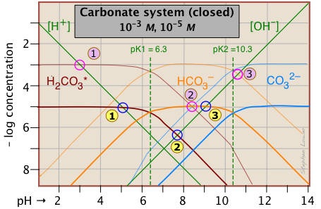 Carbonate Equilibria In Natural Waters Lower