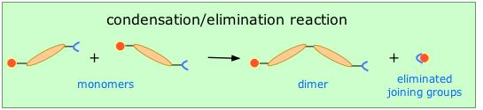 condensaton polymerization
