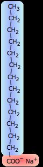 surfactant molecule