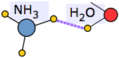 ammonia-water hydrogen bonding